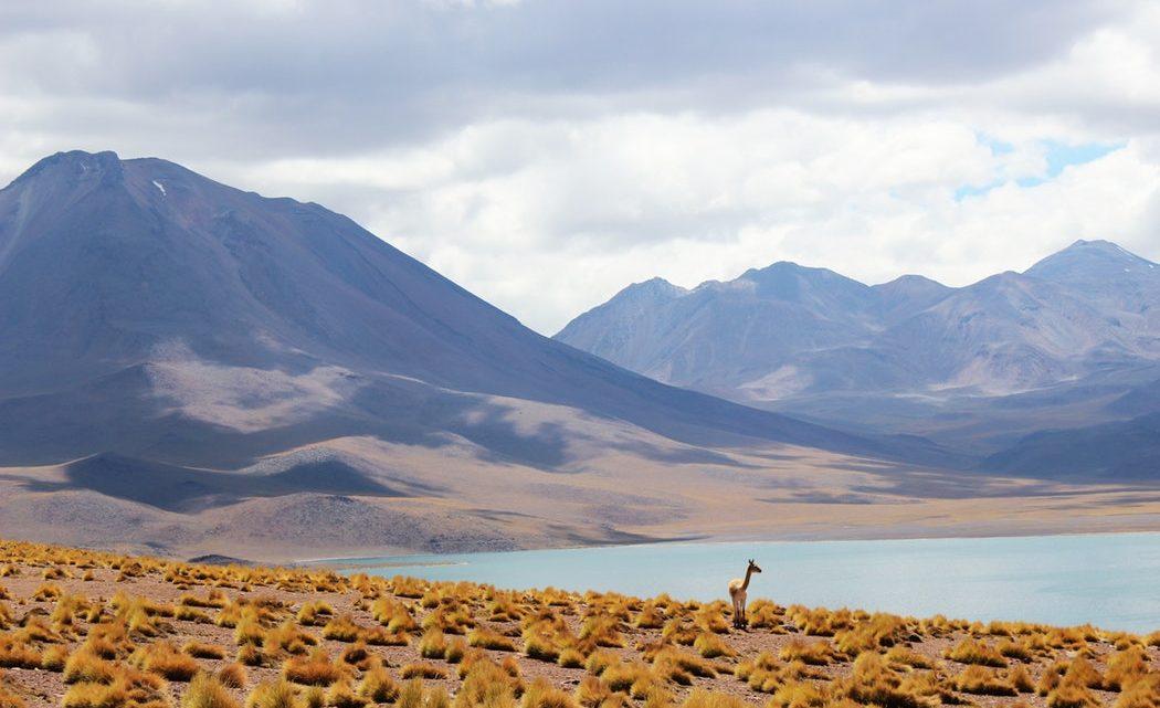Explorer une destination de rêve lors d'un voyage au Chili